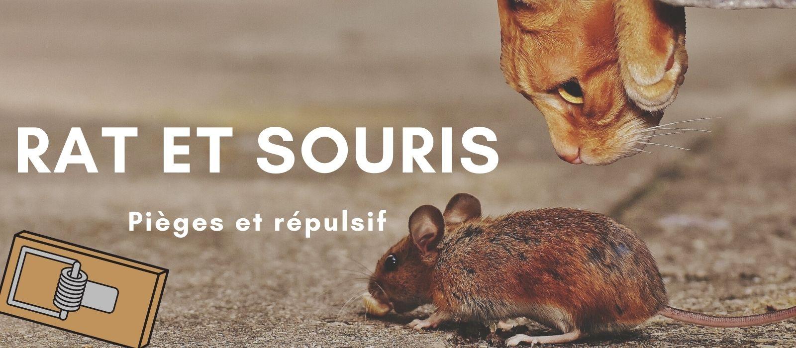 Répulsif et piège anti souris et anti rat
